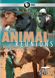 Animal Reunions | SLJ DVD Review
