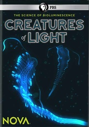 Creatures of Light | SLJ DVD Review