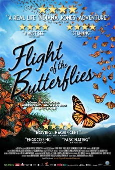 flight-of-the-butterflies