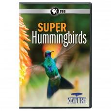 Super Hummingbirds | SLJ DVD Review