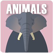 Helpers and Hunters: Animals | Series Nonfiction