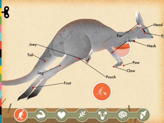 Screen from Mammals (Tinybop) illus. by Wenjia Tang