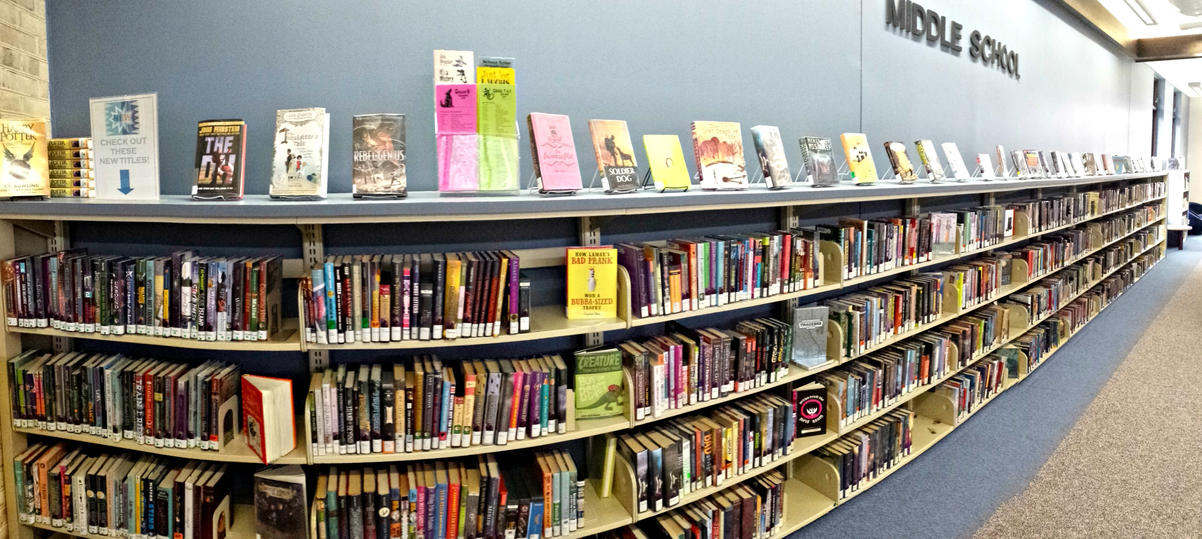 Dedicated Middle School Collections in the Public Library: A New Trend?