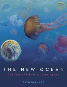 5 Nonfiction Titles (and a Graphic Novel!) for Those Who Love the Sea