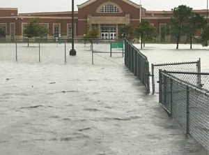 After Hurricane Harvey, School Librarians Provide Support and Stories