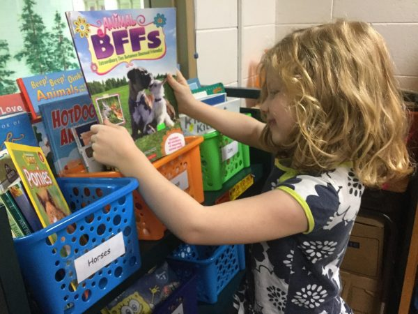 A School Library's Free Bookstore Turbocharges Reading