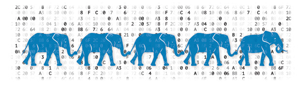 The Five Ed Tech Elephants in the PreK–12 Classroom | Opinion