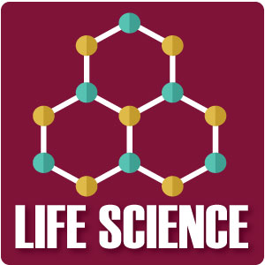 Biomes, Genetics, & Hurricanes: 16 Life Science Series for Students