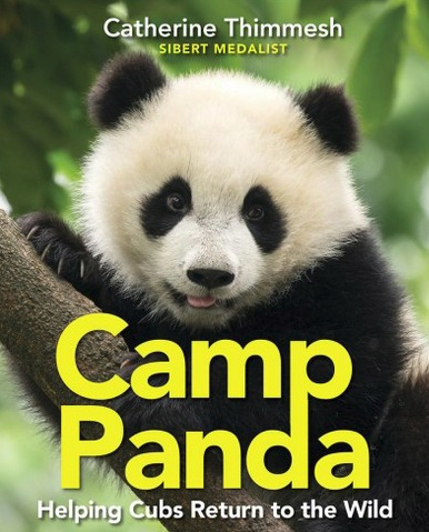 Camp Panda by Catherine Thimmesh | SLJ Review