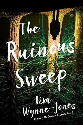 The Ruinous Sweep by Tim Wynne-Jones | SLJ Review