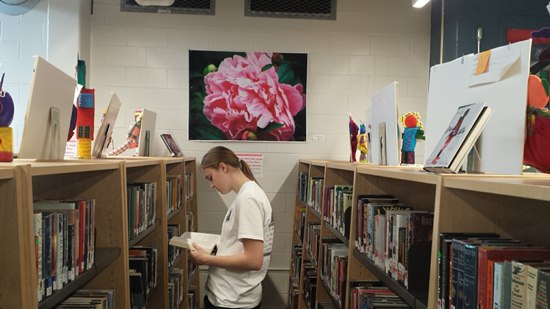 Teen Interns Get Innovative with Display Ideas at VA High School Library