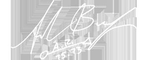 A_bingson_signature_white1