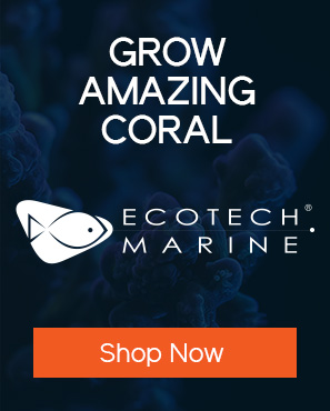 Saltwater and Reef Aquarium Supplies - Bulk Reef Supply