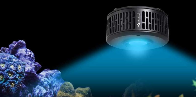 Kessil A360X Tuna Blue LED Light