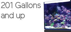 Aquariums 200 Gallons and more