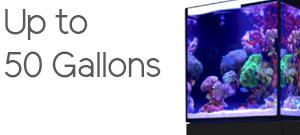 Aquariums up to 50 Gallons
