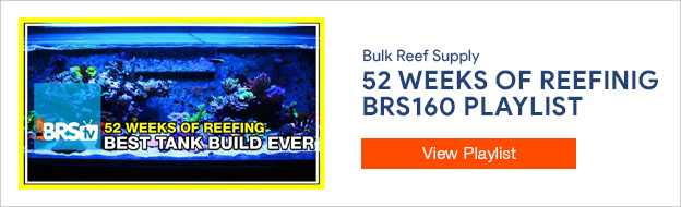52 Weeks of Reefing - BRS160 Playlist