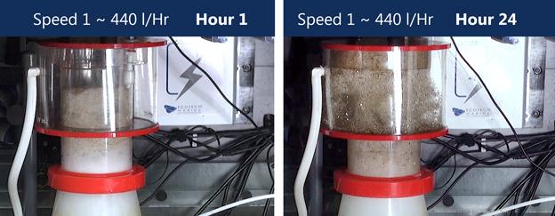 Regal pump speed 1 test results