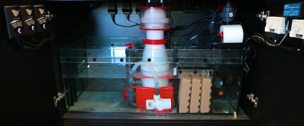 recirculating protein skimmer