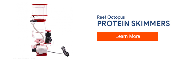 Reef Octopus Protein Skimmers