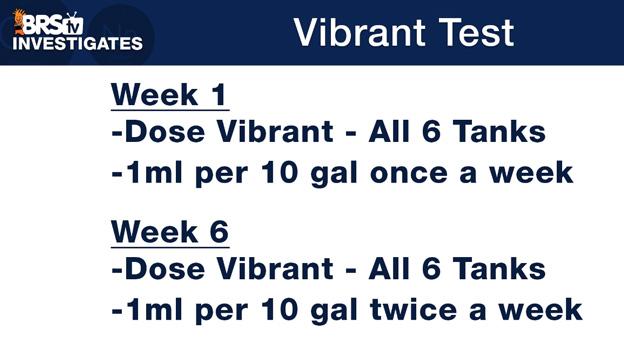Vibrant Dosage