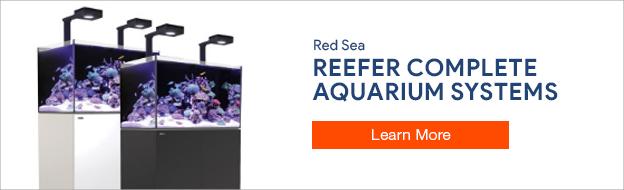 Red Sea Aquariums