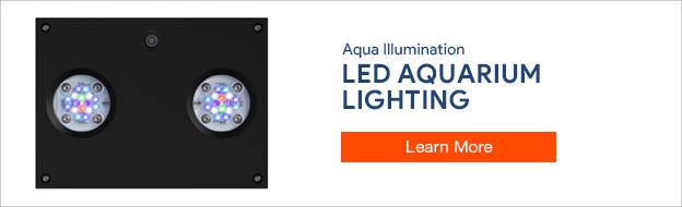 Aqua Illumination Lighting