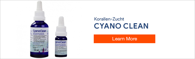 Cyano Clean Cyanobacteria Remover