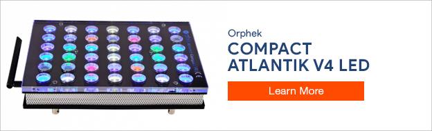 Orphek Compact Atlantik V4