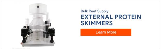 External Protein Skimmers