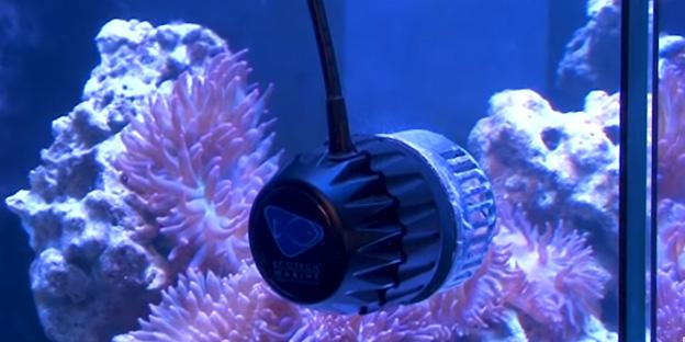 EcoTech Marine VorTech