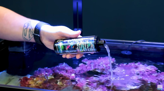 Pouring Brightwell Aquatics Microbacter Start into an aquarium