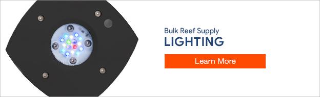 Reef Tank Lighting