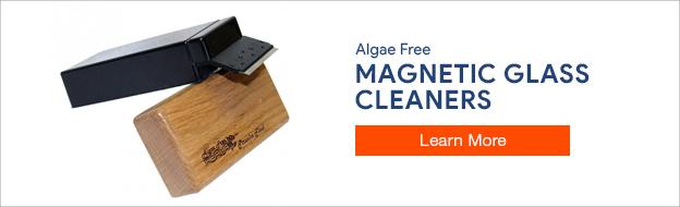 Algae Free Magnet Cleaners