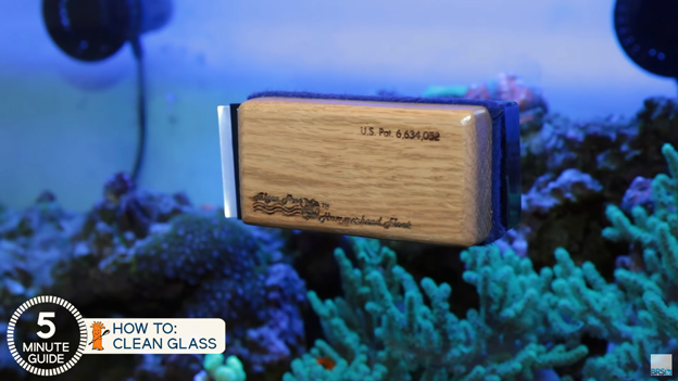 Algae Free Magnet Cleaner