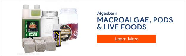 Algaebarn Live Goods