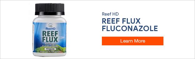 Reef Flux