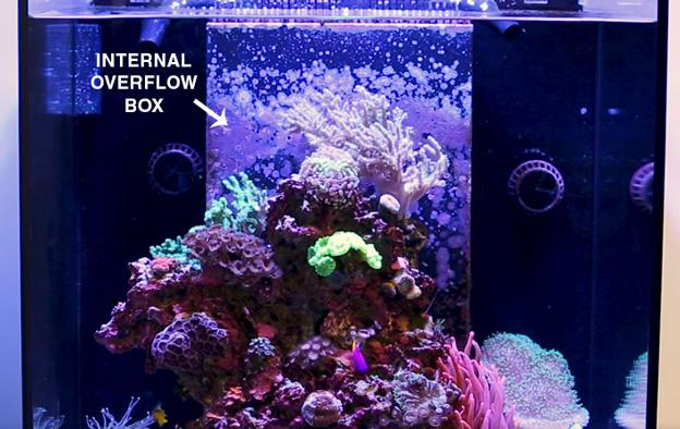 Internal overflow box