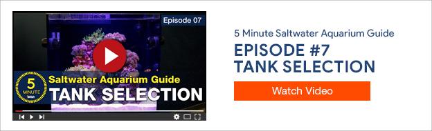 Episode #7 - Tank Selection