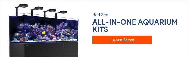Red Sea Aquariums