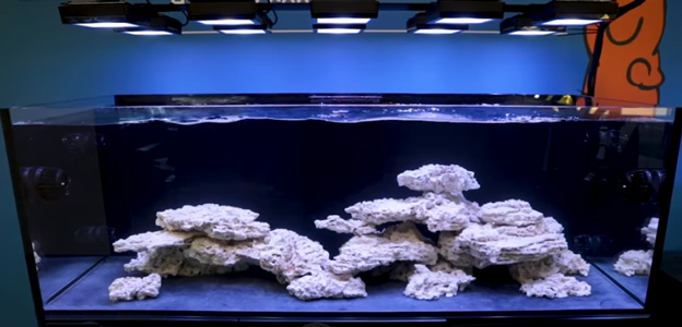 See How Easy Live Rock And Sand Selection Can Be Aquascaping A Beginner Saltwater Aquarium Bulk Reef Supply