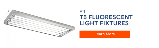 ATI T5 Lighting