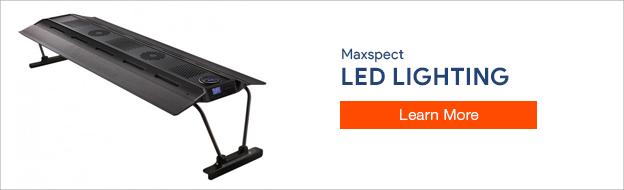 Maxspect LED Lighting
