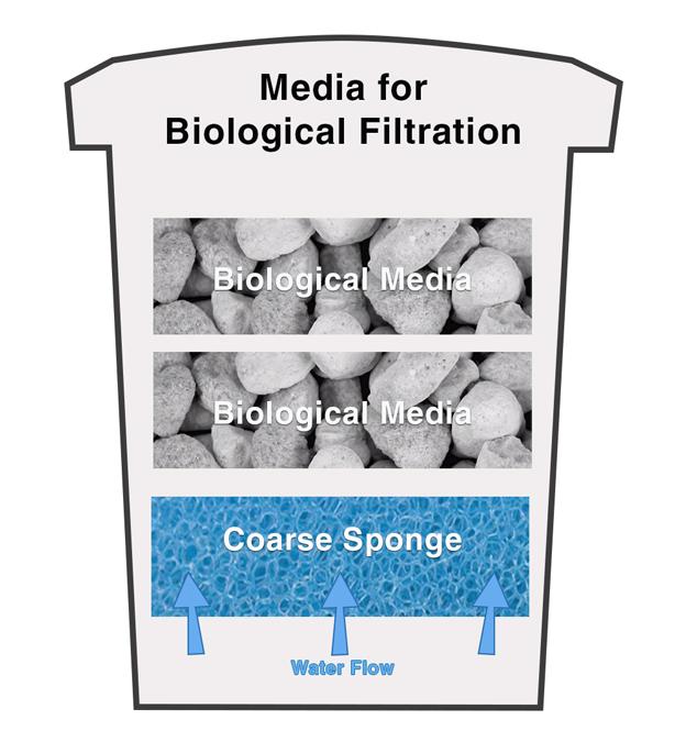 Canister Filter Media For Biological Filtration