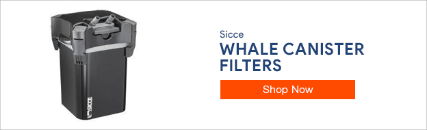 Shop Sicce Whale Canister Filters