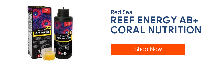 Shop Red Sea Reef Energy AB+