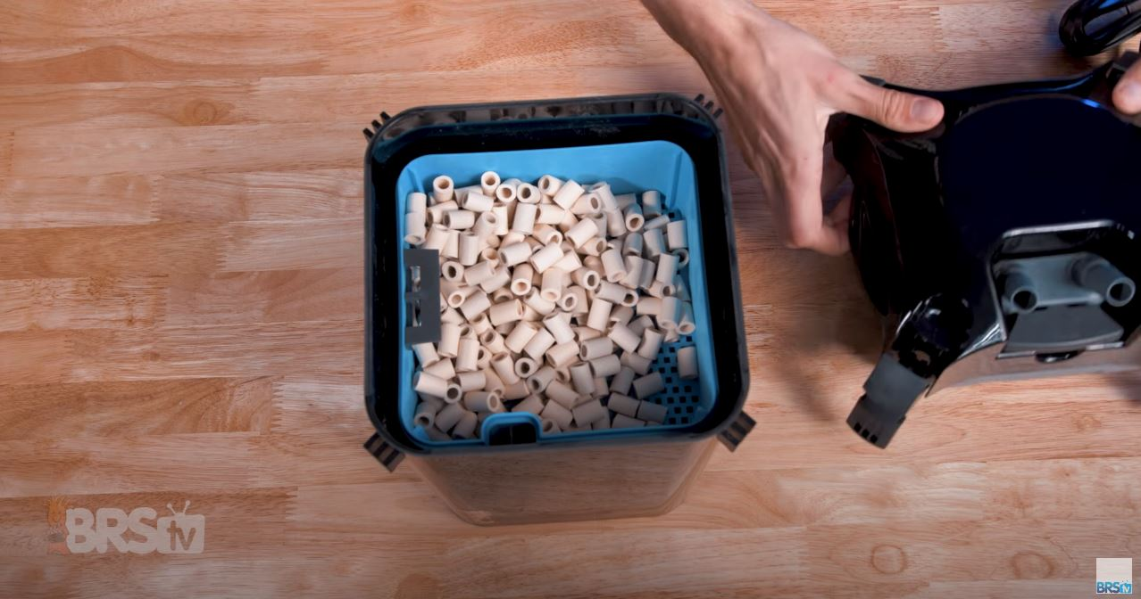 Step One: Remove the lid from the canister filter & take out the media trays.