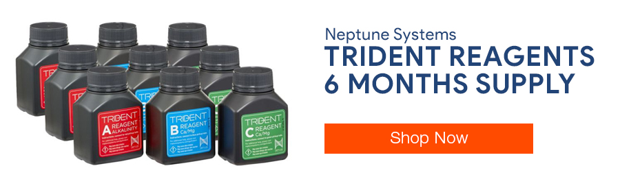 Buy Neptune Trident Reagent 6 Months Supply