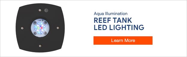 Aqua Illumination LED Lighting