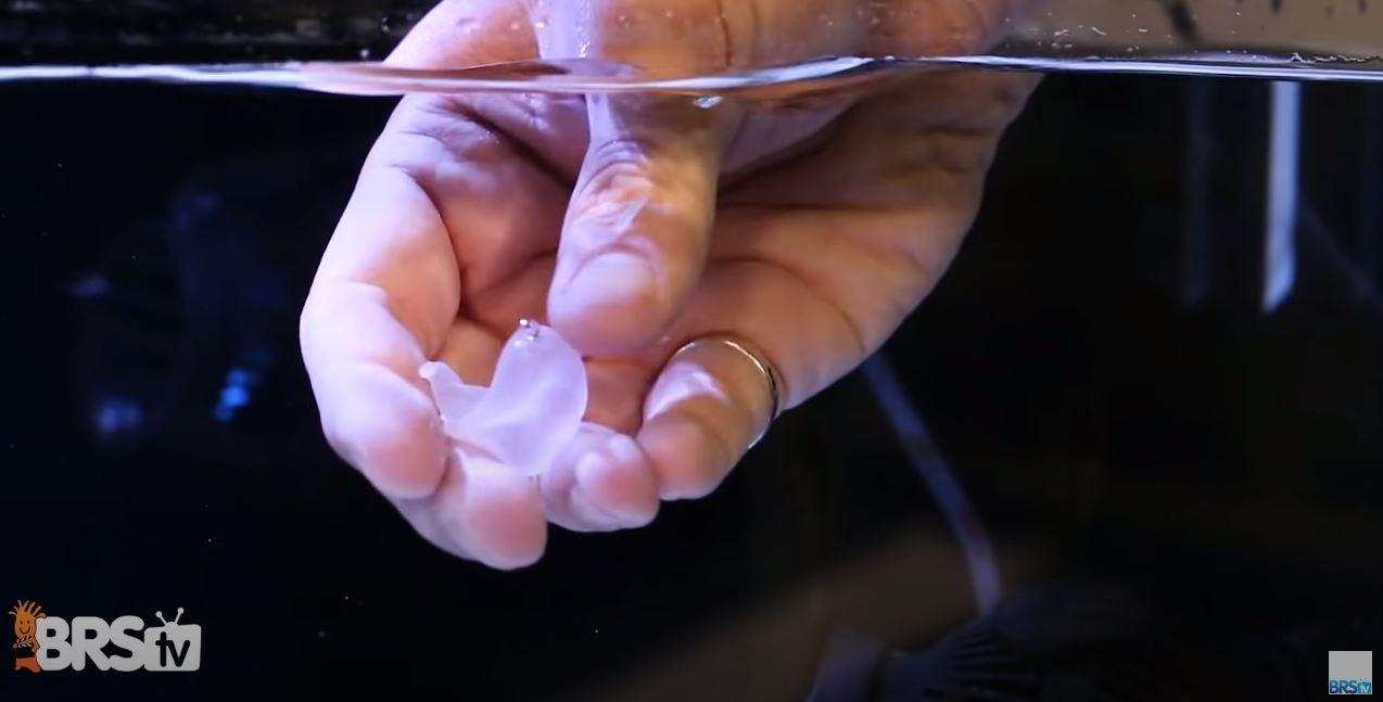 Super Glue Gel being used underwater